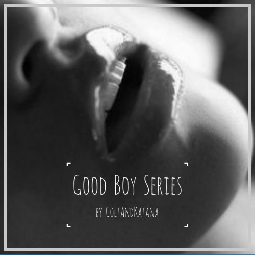 Good Boy Series.jpg